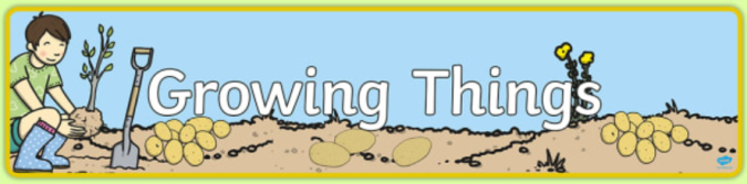 growing things banner